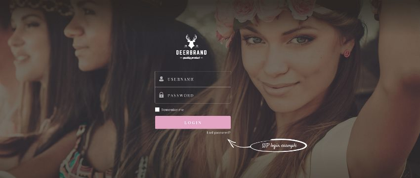 Example Styled Login page